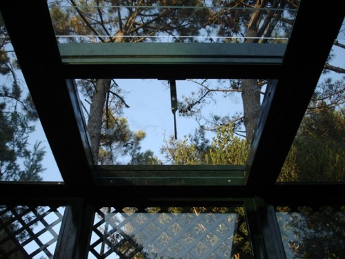 Alustoril – Jardim de Inverno 09